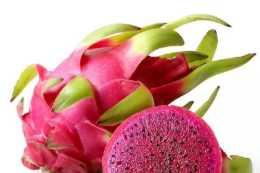 高冷豔的紅心火龍果,被蒸熟了會是什麼顏色的呢?