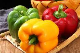 早晨記憶力最佳,來看一下烹調蔬菜的小妙招吧!